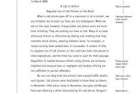 Apa Essay Examples Apa Essay Example Sample Sfbi