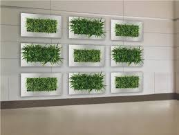 full size of decoration plants on walls vertical gardens watering vertical garden green wall planter boxes
