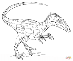 Small Picture Velociraptor coloring page Free Printable Coloring Pages