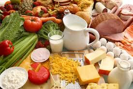 Hasil gambar untuk gambar vegetarian