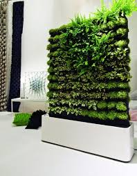Indoor Wall Garden Awesome Interior