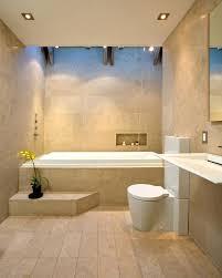 bathtub steps safe step tub bathroom contemporary with bay area architect bath stool handrail bathtub steps