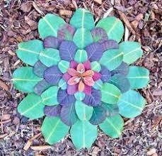 Resultado de imagem para mandala flores azuis