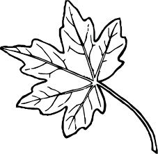 Autumn Leaves Coloring Pages Coloring Pages Leaves Autumn Fall
