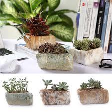 Succulent Pot Design Details About T4u Ceramic Succulent Plant Pots Mini Flower Pot Planter Bonsai Pots Stone Shape