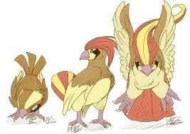 Pidgey Family By Klouku Coloured By Seth65 Fur Affinity