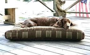 Diy Outdoor Dog Bed With Canopy S – devwizards