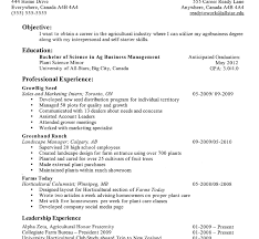 High School Student Resume Objective For Template Design Example