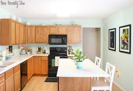 Kitchen Cabinet Budget Awesome Kitchen Cabinet Makeover Reveal