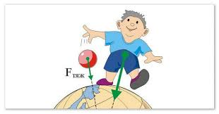 Доклад о силе тяжести весе тела и невесомости Сила тяжести направлена к центру Земли