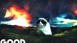grumpy-cat-meme.jpg via Relatably.com