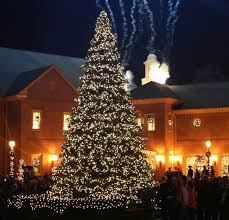 Enchanting Outdoor Lighted Christmas Trees With Beautiful Snow At ... Christmas  Lights EtcOutdoor ...
