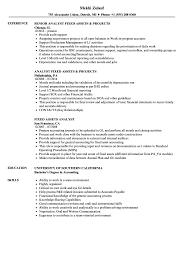 Fixed Assets Analyst Resume Samples Velvet Jobs
