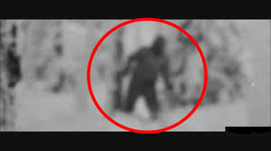 Image result for Dyatlov Pass incident