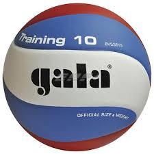 <b>Мяч волейбольный Gala Training</b> 10