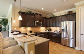 Traditional Kitchen With Kitchen Peninsula, Raised Panel, Limestone Tile,  Tropical Palm Natural Placemat