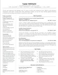 Retail Manager Resume Template Custom District Manager Resume District Manager Resume Retail Manager