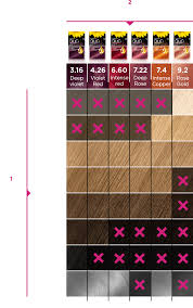 Olia Colour Chart Garnier Olia Bolds Collection Bold Vivid Hair Colour At