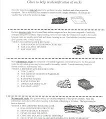4th Grade Science worksheets   Chicken Egg Labeling   Free 4th additionally 1st grade  2nd grade  3rd grade  4th grade Science Worksheets in addition  as well 4th grade Math Worksheets  Relating fractions to decimals besides Runny materials   Education   Pinterest   Free printable further  as well Free printable 3rd grade science Worksheets  word lists and moreover 4th Grade Science Worksheets On Rocks and Minerals likewise  in addition Worksheets On Food Chains   Science   Pinterest   Food chains further . on ideas for 4th grade science worksheets