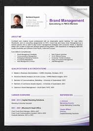 Cv Sample Download Lovely Resume Templates Professional Modern