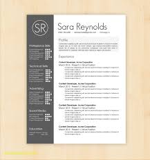 Unique Resume Templates Free Download Word Best Templates