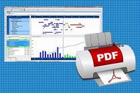 How To Print To Pdf In Primavera P6 Professional