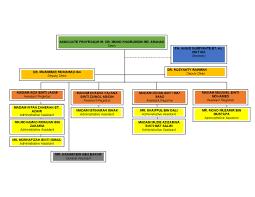 Unimap Charts Organisation Chart