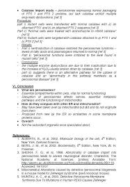 structure of writing an essay resume example of a essay outline  structure