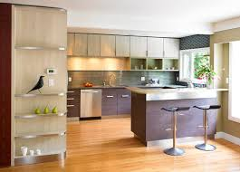 Small Picture Cool Modern Kitchen In Los Amazing Cool Modern Kitchens Home