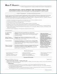 Perfect Resume Example Extraordinary Perfect Resume Example Best Of Skills In A Resume Examples New