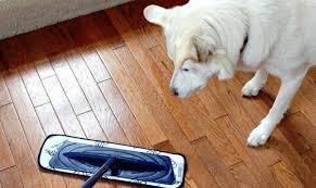 100 scotch brite microfiber hardwood floor mop target