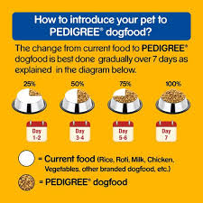 Pedigree Dog Food Adult Chicken Vegetables 15 Kg