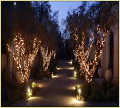 Outside Fairy Lights For Trees