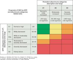 Ckd Classification Chart Chronic Kidney Disease Harrisons Principles Of Internal