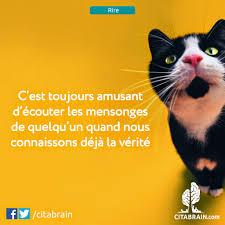 Wwwcitabraincom Citation Et Proverbes Citation Amour Flickr