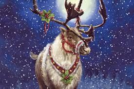 Christmas Reindeer Pictures Wallpapers ...