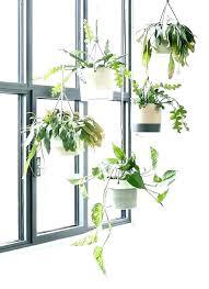 indoor hanging plant holder wall plants indoor plant hangers indoors plant holder indoor indoor hanging plant indoor hanging plant holder