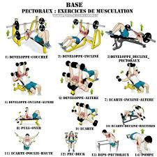 Chest Workout Chart Step By Step Pin On Exercise