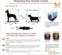 dog crates size chart petmate vari kennel for your traveling pet vari kennels