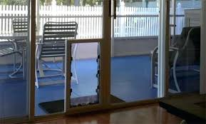 glass dog doors in glass pet doors glass dog door geelong