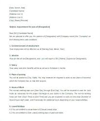 Employment Letter Example Cool Executive Offer Letter Template Namhoian