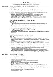 Child Care Resume Child Care Manager Resume Samples Velvet Jobs 9