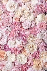 Gardening」おしゃれまとめの人気アイデア|Pinterest|Wendy Englehardt | バラの壁紙, 大きなウォールアート,  美しい花