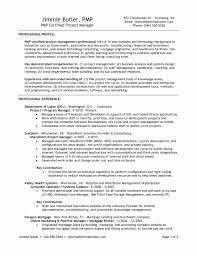 Sample Healthcare Consultant Resume Healthcare Management Consultant Resume Best Of Project 16