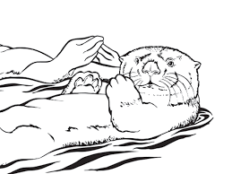 Otter Coloring Pages Fun Time