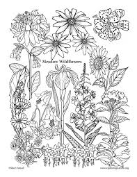 Small Picture Coloring Download Life Science Coloring Pages Life Science
