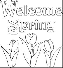 Download Coloring Pages Flower Color Spring To And Print For