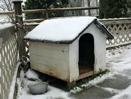 winter dog house insulated dog house best outdoor dog house for winter