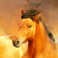 homeanimals a couple of bay horses canvas large art