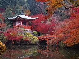 Japanese Style Garden Bridges Japan Autumn Garden Bridges Kyoto Lakes Maple Hd Wallpaper 2427813